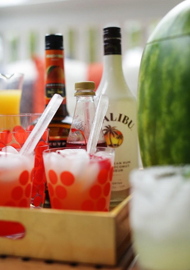 Boozy Party 11