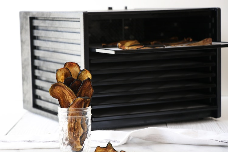 dehydrating at home getting the best from your dehydrator from fruit leather to meat jerkies