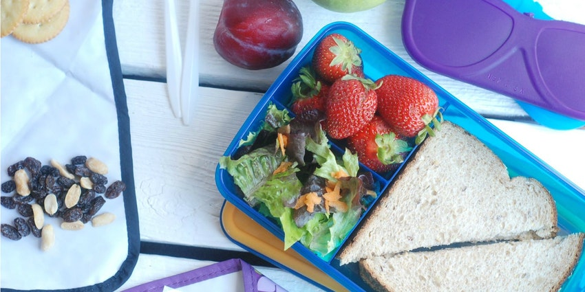 Back to School Lunchbox Troubleshooter