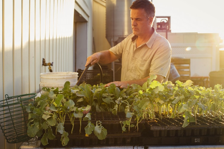 How These Two Men Traded In City Life for Farm Life
