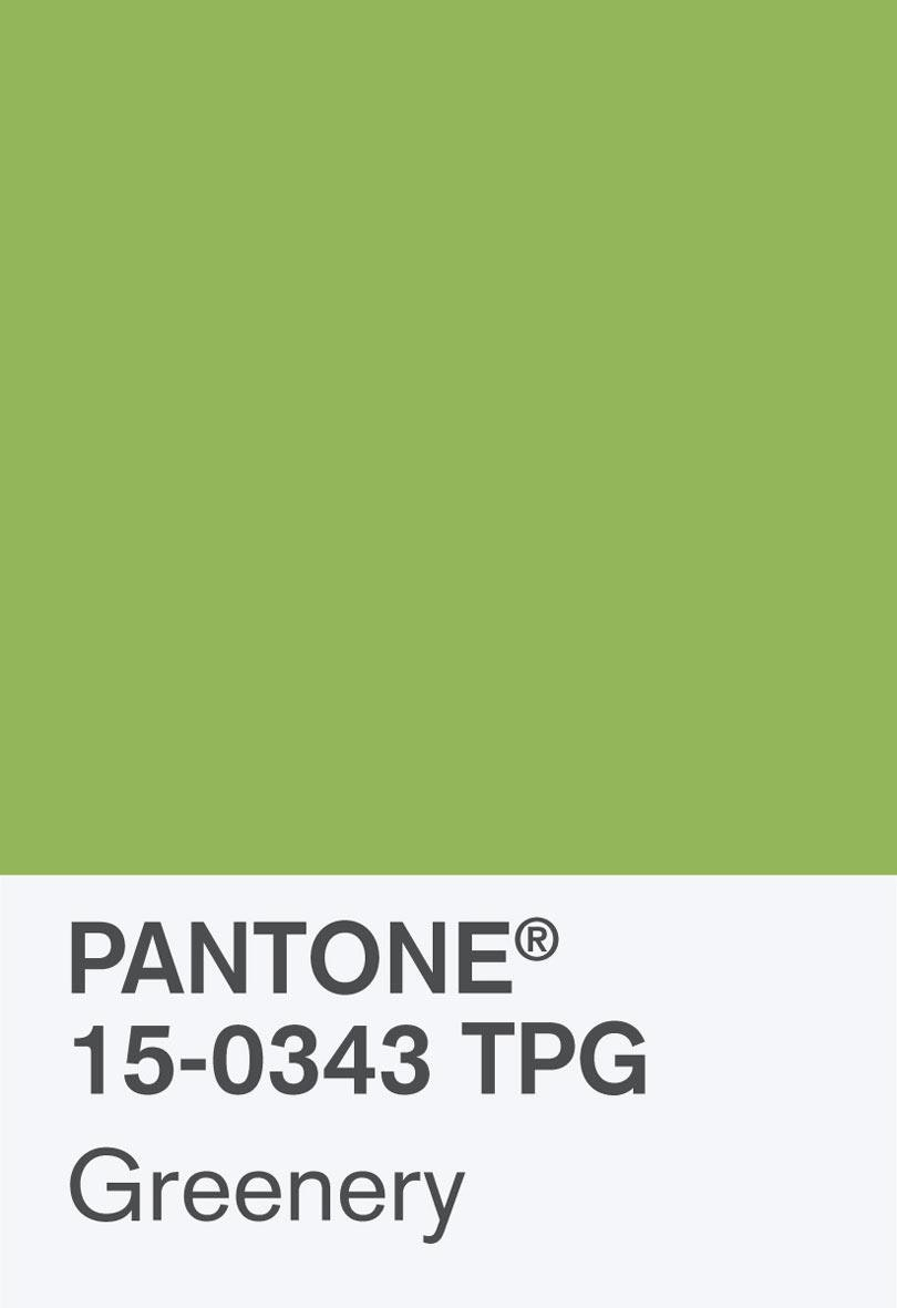 Pantone Coy 2017 Hero Shot Rgb Chip 2
