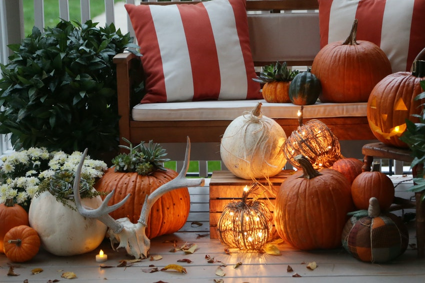 Succulent Topped Pumpkins Are the Fall Décor You Didn't Know You Needed