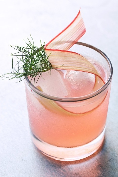 Rhubarb Fennel Vermouth Cocktail