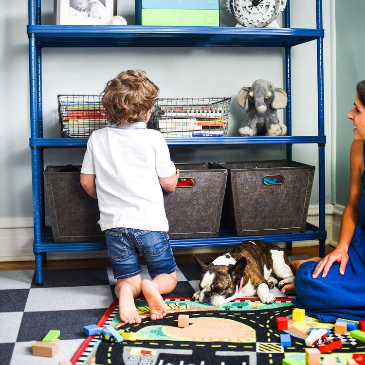 Toy Storage Tips to Steal Right Now