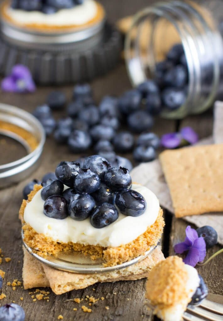 Blueberry Lemon Tart 1 Of 1 19 710X1024